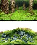 Hobby Folienrückwand Zuschnitt Scapers Hill / Scapers Forest SB