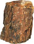 Hobby Petrified wood