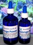 Korallen-Zucht Sponge Power Konzentrat 10 ml