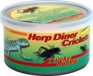 Lucky Reptile Herp Diner Crickets