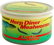 Lucky Reptile Herp Diner Mealworms - 35 g