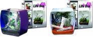Lucky Reptile Life Box designer terrarium