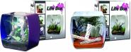 Lucky Reptile Life Box Designerterrarium