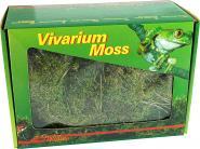 Lucky Reptile Vivarium Moss - 150 g
