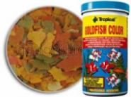 Tropical Goldfish Color