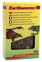 Lucky Reptile Earthworms 10 g