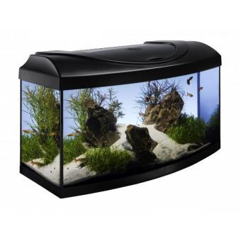 Aquarium Set Diversa-StartUp-AP Set 60 cm LED mit gebogener Front