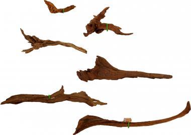 Friscer Sumatra Teak - Hard Driftwood Aquarium Wurzel