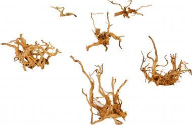 Friscer Red Moorwood Aquarium Root