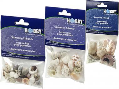 Hobby Sea Shells Set SB