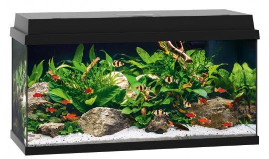 Juwel Primo 110 Aquariumset - schwarz