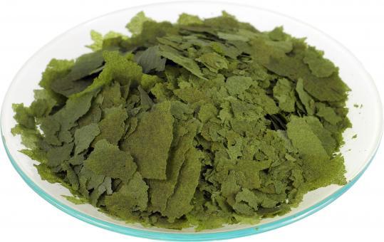 aquaristic.net Spirulina Flakes 30% 180 g - 1000 ml Bag