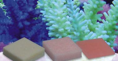 Korallen-Zucht Automatic Elements Amino Acid Concentrate 5 pcs.