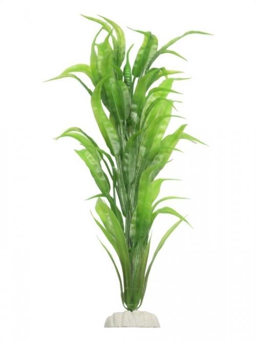Evolution Kunststoffpflanze Hygrophila var. glabra - ca. 30 cm