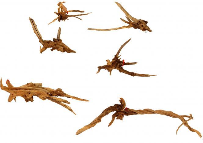 Friscer Bonsai Driftwood Nano Aquarium Root