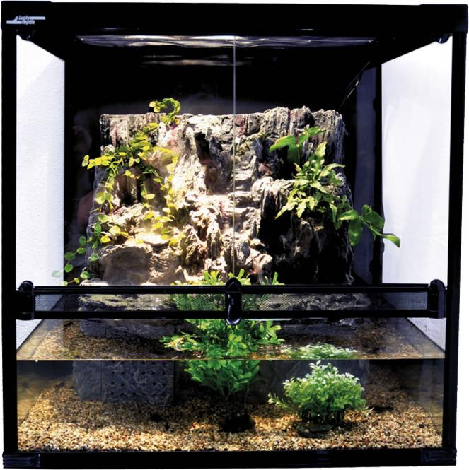 Lucky Reptile Aqua-Tarrium schwarz