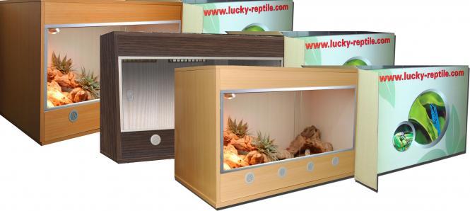 Lucky Reptile Bearded Dragon Terrarium