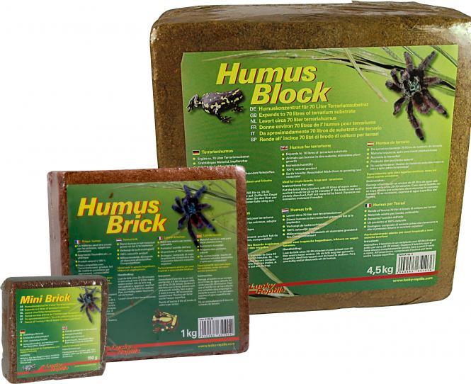 Lucky Reptile terrarium humus