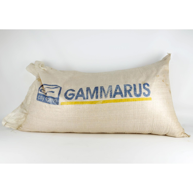 Bachflohkrebse / Gammarus getrocknet 12 kg Sack