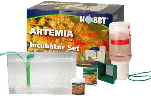 Hobby Artemia Incubator Set