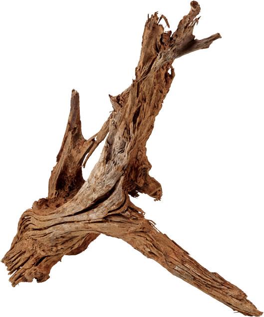 Hobby Mangrovenholz