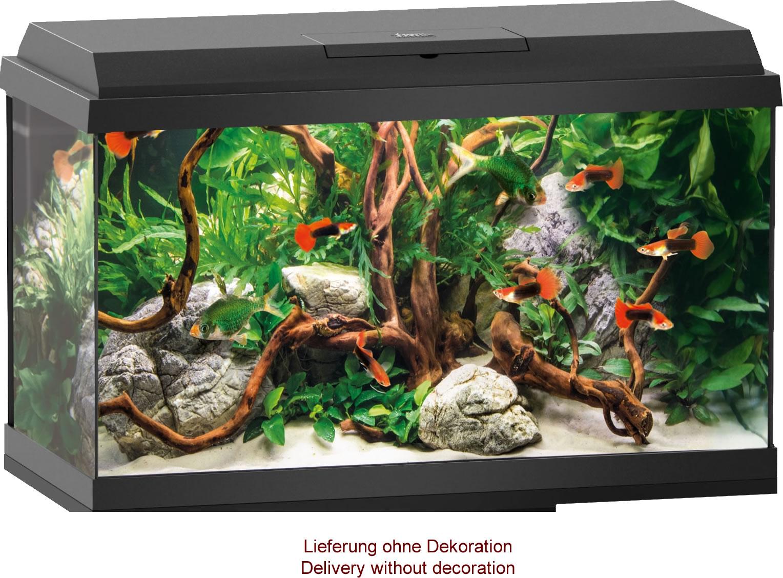 Juwel primo 60 led aquarium set black for Aquarium set
