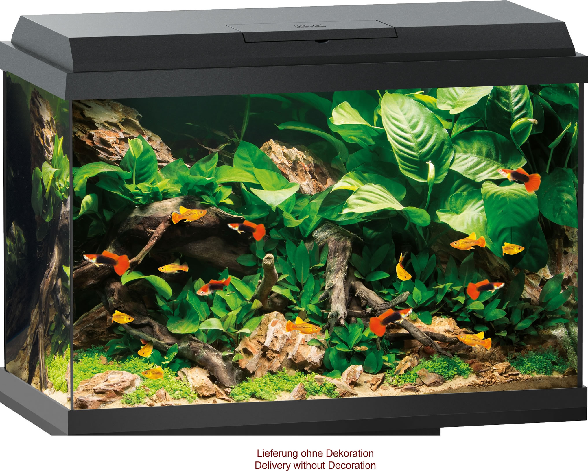 Juwel Primo 70 LED Aquarium Set schwarz