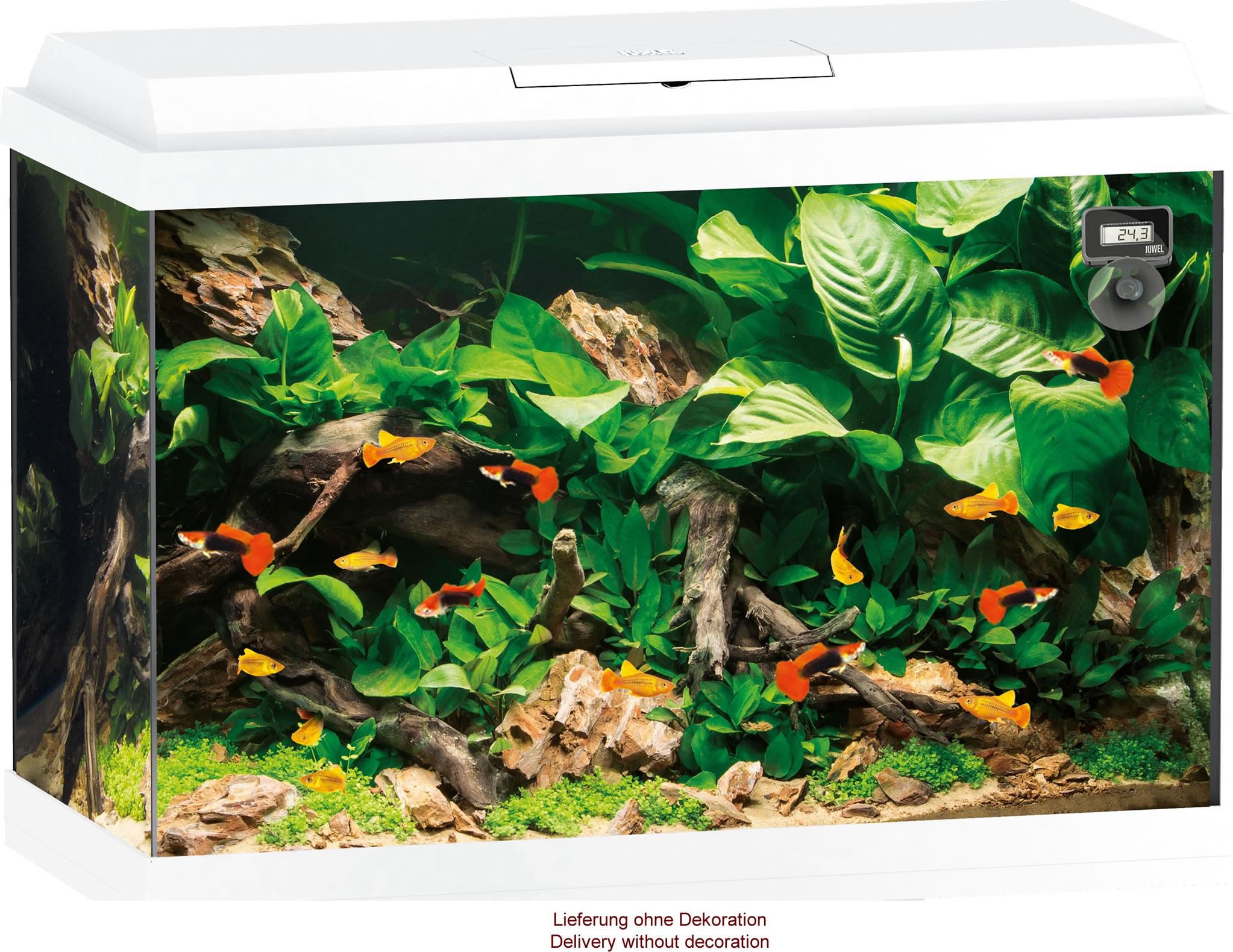 juwel-primo-70-weiss-ohne-schrank-25470 Incroyable De Aquarium Deco Des Idées