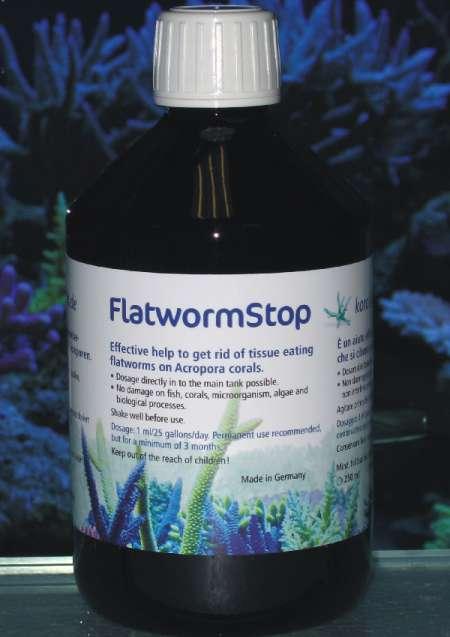 Korallen-Zucht Flatworm Stop