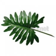 Lucky Reptile Jungle Plants - Große Blätter
