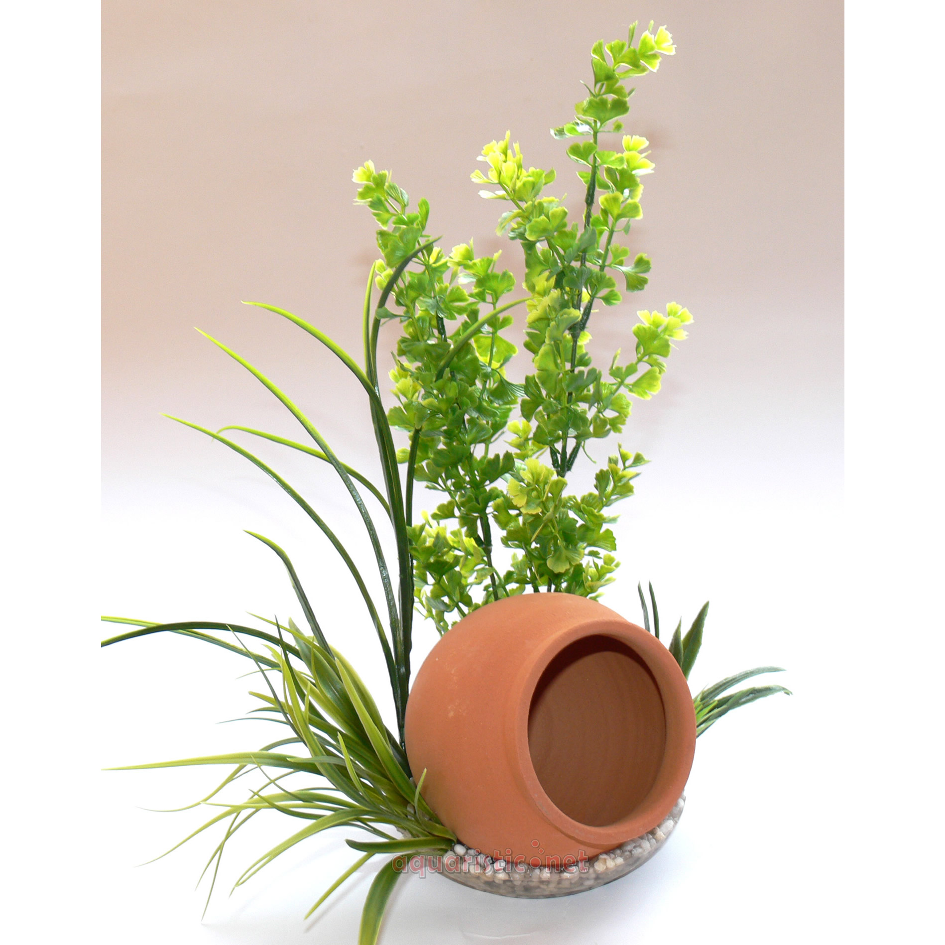 Sydeco Jar Plant, 35 cm hoch