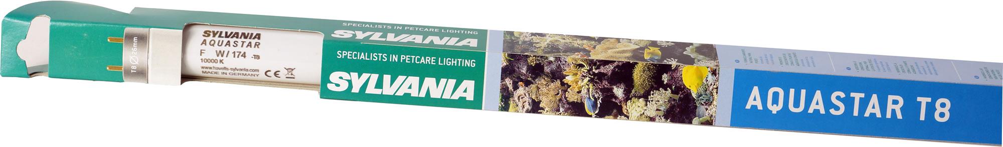 Sylvania Aquastar T8 Aquarium Leuchtstoffröhre Tageslicht