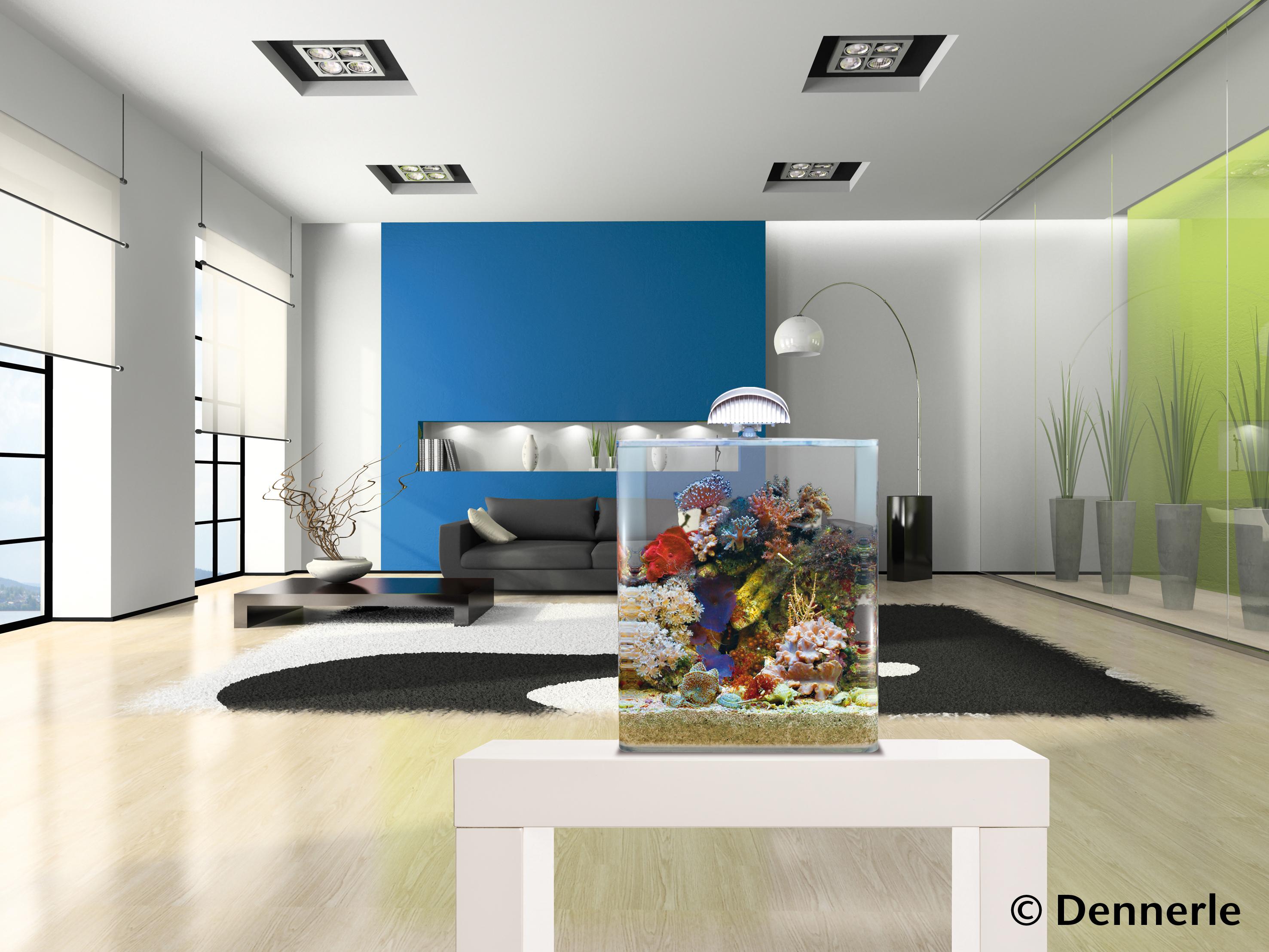 dennerle nano marinus cube complete plus led. Black Bedroom Furniture Sets. Home Design Ideas